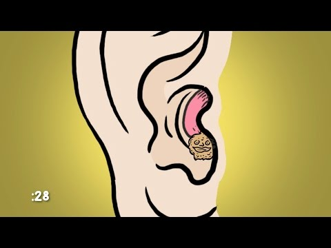 What Is Ear Wax For?