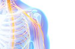 Lumbar Sympathectomy