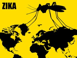 Second Zika-Affected Birth in United States