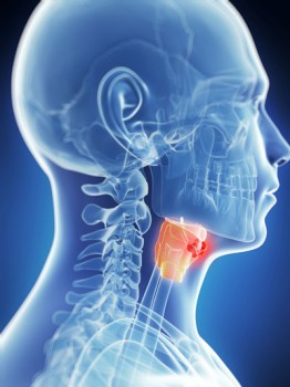 Laryngopharyngectomy