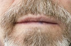 Lip Shave
