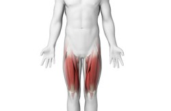 Adductor Release