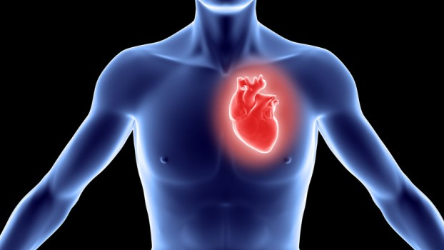 Aortic Valve Repair Surgery