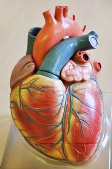 Balloon Angioplasty Valvuloplasty