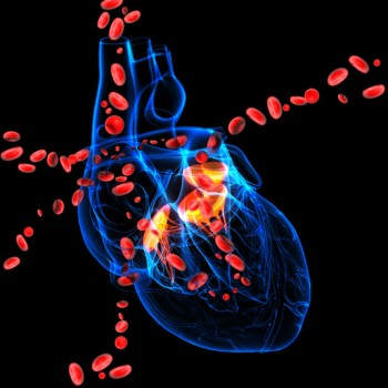 Beating Heart Aortic Valve Replacement