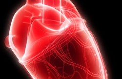 Beating Heart Pulmonary Artery Valve Replacement