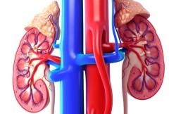 Laparoendoscopic Single-Site Surgery for Adrenal Gland Removal