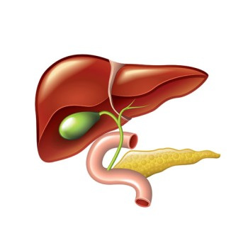 Laparoendoscopic Single-Site Surgery for Gallbladder Removal