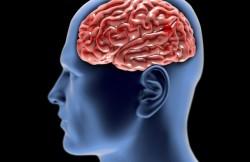 Cerebral Aneurysm Repair by Endovascular Embolization