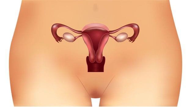 Cervix Conization