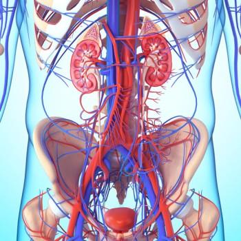 Open Bladder Surgery