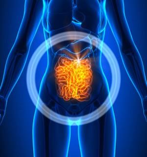 Laparoscopic Small Intestine Partial Resection