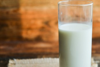 Study Looks at Benefits of Whole Milk Products