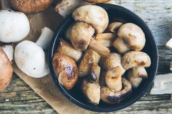 Prostate Cancer Risk and Eating Mushrooms