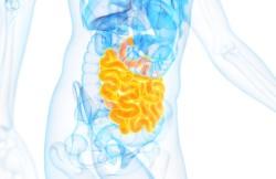 Enteroenterostomy