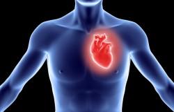 Heart Valve Repair Surgery