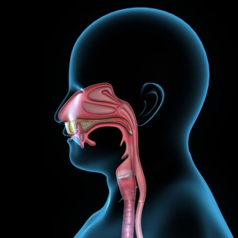 Mandibular Labial Frenectomy by OrangeCountySurgeons.org - 2