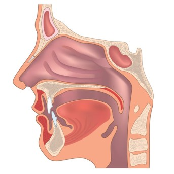 Endonasal Rhinoplasty by OrangeCountySurgeons